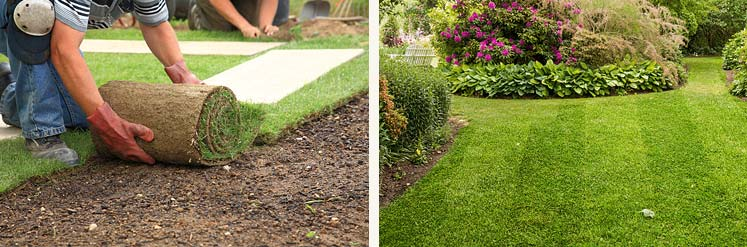 Residential Landscaping & Gardening Services